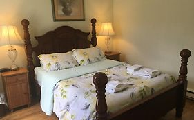 Toronto Garden Inn Bed And Breakfast