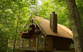 A Cabin In The Woods พิเจนฟอร์จ  United States