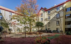 Red Roof Inn And Suites Atlanta Midtown