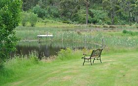 Hamlet Downs Country Accommodation Fentonbury Tas