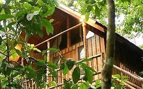 Bayrams Tree Houses Villa Olympos