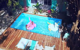 La Oveja Negra Tamarindo Hostel And Surf Camp Adults Only