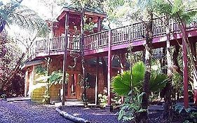 The Guest Cottages at Volcano Tree House