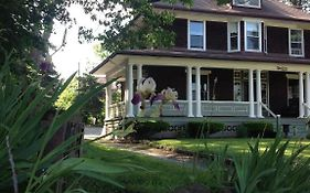 Lion's Head Bed And Breakfast