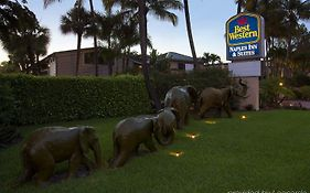 Best Western Naples Fl