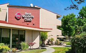 Best Western Mowry Ave Fremont Ca