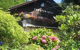 Pension Wolf