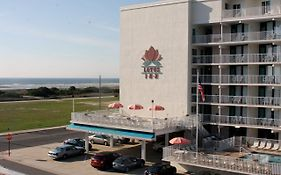 Lotus Inn Wildwood Crest Nj