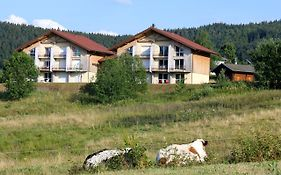 Apartment With One Bedroom In Xonrupt Longemer With Wonderful Mountain View 10 Km From The Slopes