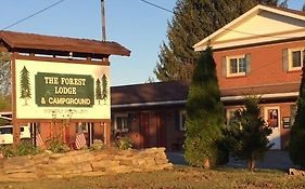 Forest Lodge And Campground