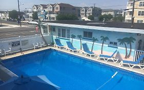 Surf Haven Wildwood Nj