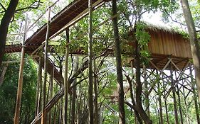 Juma Amazon Lodge photos Exterior