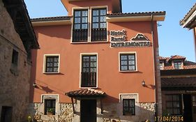 Hotel Entremontes Cangas de Onis
