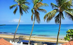 Tres Palmas Inn Reviews