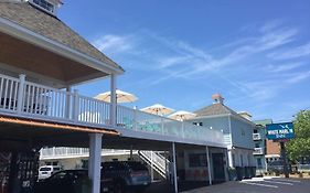 White Marlin Hotel Ocean City Maryland