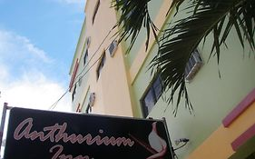 Anthurium Inn Cebu