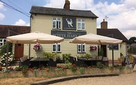 The White Hart Margaretting