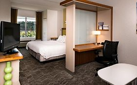 Springhill Suites Southside Works Pittsburgh Pa 3*