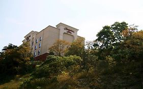 Hampton Inn Pittsburgh Area-Beaver Valley-Ctr Township Monaca Pa