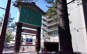 Pepper Tree Inn Lake Tahoe 3*