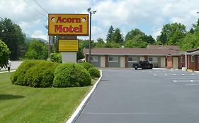 Acorn Motel Black Mountain
