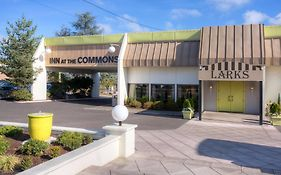 Inn at The Commons Medford