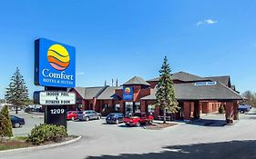 Comfort Hotel And Suites Peterborough