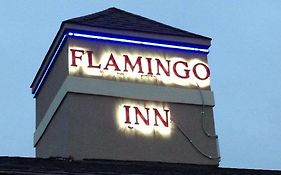 Flamingo Inn photos Exterior