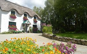 Lissyclearig Thatched Cottage Kenmare