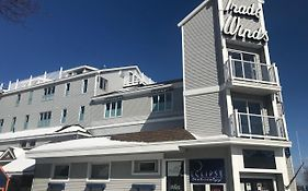 Trade Winds Hotel Rockland Maine