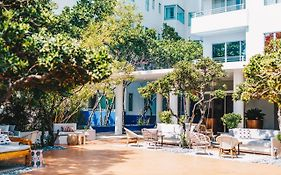 Shore Club Hotel Miami Reviews