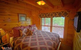 Starry Nights 222 - Two Bedroom Cabin