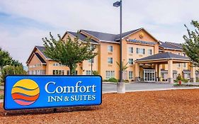 Comfort Inn Creswell Oregon