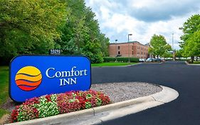 Comfort Inn Carmel In