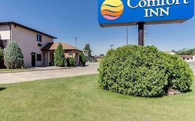 Comfort Inn Jamestown North Dakota