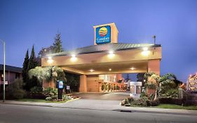 Comfort Inn And Suites Oakland