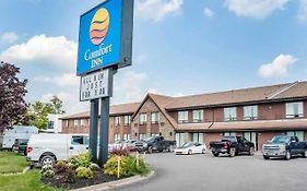 Comfort Inn Newmarket On