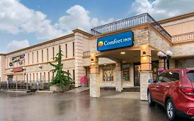 Comfort Inn And Suites Toronto Airport
