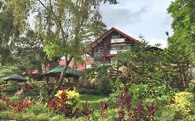 Safari Lodge Baguio By Log Cabin Hotel photos Exterior