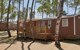 Mobil Homes Xxl - Camping Ranch Des Volcans photos Exterior