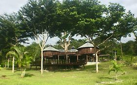 Exotic High End Unique Off-The-Grid Treehouse, Steps Away From The Mopan River! photos Exterior