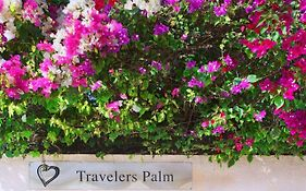 Travelers Palm Key West