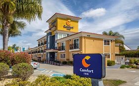 Castro Valley Comfort Inn
