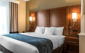 Comfort Suites Scranton Near Montage Mountain  3* United States