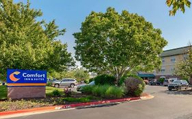 Comfort Inn And Suites Fayetteville Ar