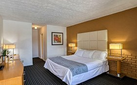 Haven Hotel Pompano Beach Fl