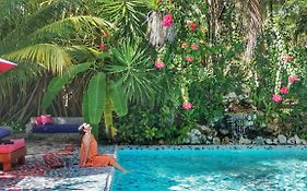 Maruba Resort Jungle Spa Reviews