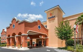 Comfort Inn The Villages Lady Lake Fl