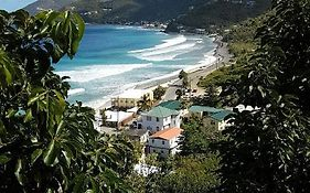 Purple Pineapple Guest Houses - Overlooking Apple Bay, Tortola Bvi