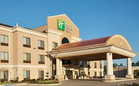 Holiday Inn Center Texas